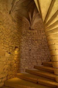 Château de Beynac &amp; Cazenac<br> Réserve de Biosphère du Bassin de la Dordogne
