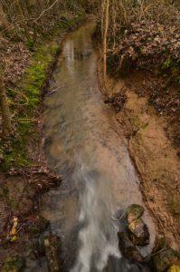 Vallée du Ru de la Brosse<br> Réserve de Marne &amp; Gondoire