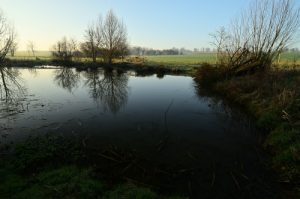 La petite mare<br> Vallée du Ru de la Brosse<br> Réserve de Marne &amp; Gondoire