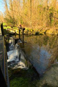 Vannes situées sur le canal d'amenée à l'amont du Moulin de Russon<br> Vallée du Ru de la Brosse<br> Réserve de Marne &amp; Gondoire