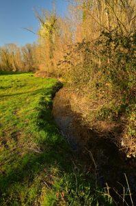 Canal d'amenée à l'amont du Moulin de Russon<br> Vallée du Ru de la Brosse<br> Réserve de Marne &amp; Gondoire