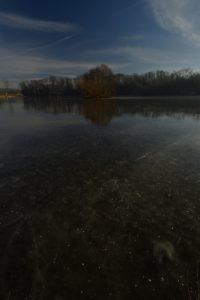 Etang de La Loy sous la glace<br> Réserve de Marne &amp; Gondoire