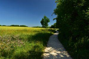 La Vallée de La Gondoire<br> Site classé de la vallée de La Brosse et de La Gondoire