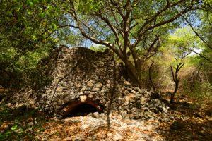 Trace des Caps à Petit Sable (Pointe Marignan)<br> Parc Naturel Régional de La Martinique