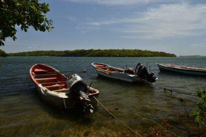 Embarcadère pour l'Îlet Chevalier<br> Parc Naturel Régional de La Martinique