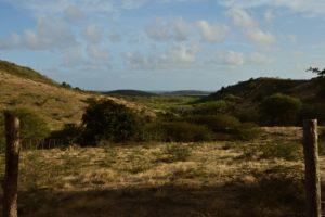 Chemin de Cap Chevalier aux Anglais des Grottes<br> Parc Naturel Régional de La Martinique