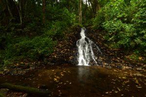 Seconde cascade du Saut d'Argis<br> Parc Naturel Régional de La Martinique