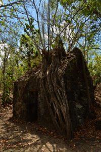 Place-forte composée d'une batterie de canons et d'une poudrière<br> Morne Champagne<br> Parc Naturel Régional de La Martinique