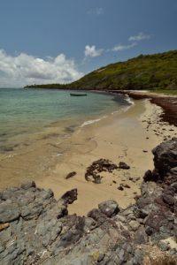 L'Anse Noire<br> Trace des Caps de Cul-de-Sac Ferré à la Baie des Anglais<br> Parc Naturel Régional de La Martinique