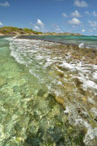 L'Anse la Balle<br> Trace des Caps de Cul-de-Sac Ferré à la Baie des Anglais<br> Parc Naturel Régional de La Martinique