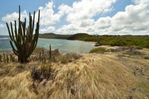 La Pointe de l'Étang<br> Trace des Caps de Cul-de-Sac Ferré à la Baie des Anglais<br> Parc Naturel Régional de La Martinique