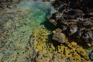 La piscine naturelle l'Œil bleu du Cap Ferré<br> Trace des Caps de Cul-de-Sac Ferré à la Baie des Anglais<br> Parc Naturel Régional de La Martinique