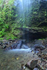 <br> Parc Naturel Régional de La Martinique