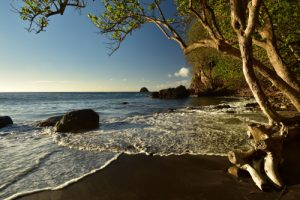 L'Anse Céron<br> Parc Naturel Régional de La Martinique