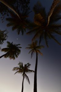 L'Anse Couleuvre au coucher du soleil<br> Parc Naturel Régional de La Martinique