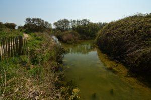 Espace Naturel Sensible du Cap Gris-Nez<br> Parc Naturel Régional des Caps et Marais d'Opale