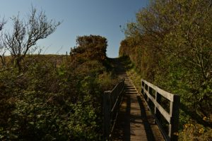 Sentier de la Motte du Bourg<br> Espace Naturel Sensible de la Baie de Wissant<br> Parc Naturel Régional des Caps et Marais d'Opale