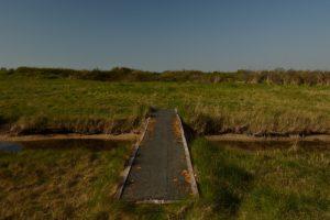 Espace Naturel Sensible des Dunes du Fort Vert<br> Parc Naturel Régional des Caps et Marais d'Opale