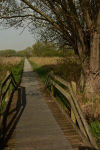 Sentier des Têtards<br> Espace Naturel Sensible du Marais de Guînes<br> Parc Naturel Régional des Caps et Marais d'Opale