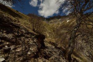 Chemin du Lac du Lauzon<br> Massif du Dévoluy