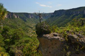 La corniche des gorges de la Jonte<br> Le Causse Méjean<br> Parc Naturel National des Cévennes