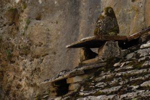 Le village caussenard de Castelbouc<br> Les gorges du Tarn<br> Parc Naturel National des Cévennes