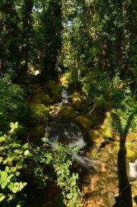 Cascade du village de Florac<br> Les gorges du Tarn<br> Parc Naturel National des Cévennes