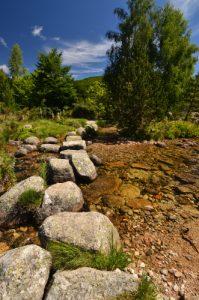 Gué sur la rivière du Tarn<br> Le Mont Lozère<br> Parc Naturel National des Cévennes