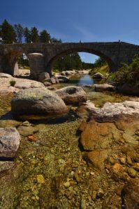 Le pont du Tarn<br> Le Mont Lozère<br> Parc Naturel National des Cévennes