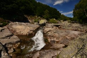 La rivière du Tarn<br> Le Mont Lozère<br> Parc Naturel National des Cévennes