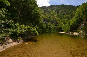 Les Gorges du Tarn<br> Parc Naturel National des Cévennes