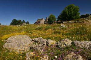 Le Mont Lozère<br> Parc Naturel National des Cévennes