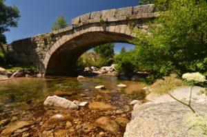 Pont sur la rivière du Tarn<br> Le Mont Lozère<br> Parc Naturel National des Cévennes