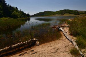 Le Lac des Pises<br> La Montagne du Lingas (Massif de l'Aigoual)<br> Parc Naturel National des Cévennes