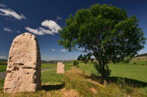 Menhirs de Gally<br> Le Causse Méjean<br> Parc Naturel National des Cévennes