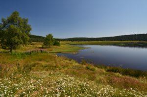 L'Étang de Barrandon<br> Le Mont Lozère<br> Parc Naturel National des Cévennes