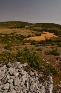 Dolmen<br> Le Causse Méjean<br> Parc Naturel National des Cévennes