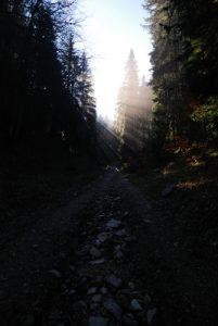 Chemin de la  Roche Chalve<br> Parc Naturel Régional du Vercors