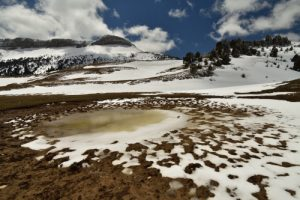 Le Vallon de Combau<br> Réserve Naturelle Nationale des Hauts Plateaux du Vercors<br> Parc Naturel Régional du Vercors