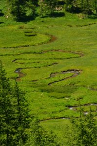 Méandres de la Serpentine de la Tourbière de Laus<br> Le Lac d'Allos<br> Parc Naturel National du Mercantour