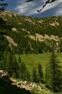 La Tourbière de Laus<br> Le Lac d'Allos<br> Parc Naturel National du Mercantour