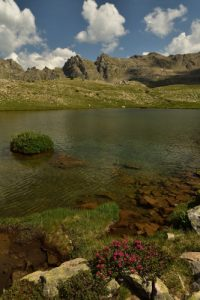 Vallon de la Braissette<br> Parc Naturel National du Mercantour
