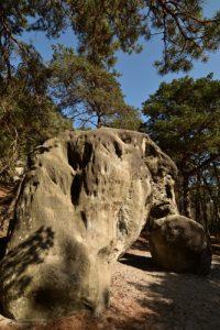 Le Rocher remarquable L'Éléphant<br> Forêt Domaniale de La Commanderie<br> Parc Naturel Régional du Gâtinais Français