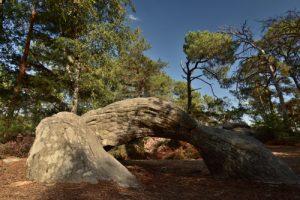 Chaos de Grès du Rocher de la Justice<br> Forêt Domaniale de La Commanderie<br> Parc Naturel Régional du Gâtinais Français