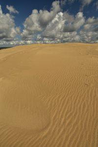 La Dune du Pilat<br> Parc Naturel Régional des Landes de Gascogne