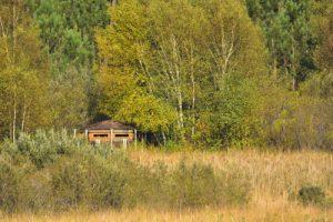 L'Espace Naturel Sensible des Lagunes du Gât-Mort<br> Parc Naturel Régional des Landes de Gascogne