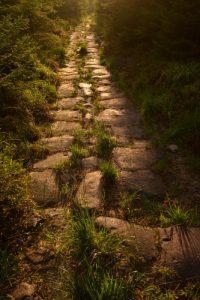 La voie romaine<br> Massif des Vosges centrales
