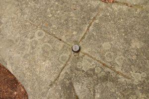 Pierre solaire ou sculptures pour repères astronomiques servant de calendrier ?<br> Cromlech du Jardin des Fées<br> Massif des Vosges centrales