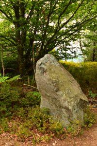 Menhir debout<br> Cromlech du Jardin des Fées<br> Massif des Vosges centrales
