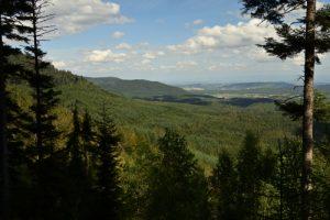 Mont du Grand Katzenberg<br> Massif des Vosges centrales